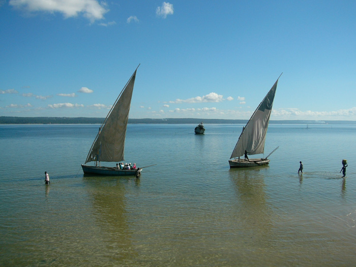Dhows in Inhambane Harbour